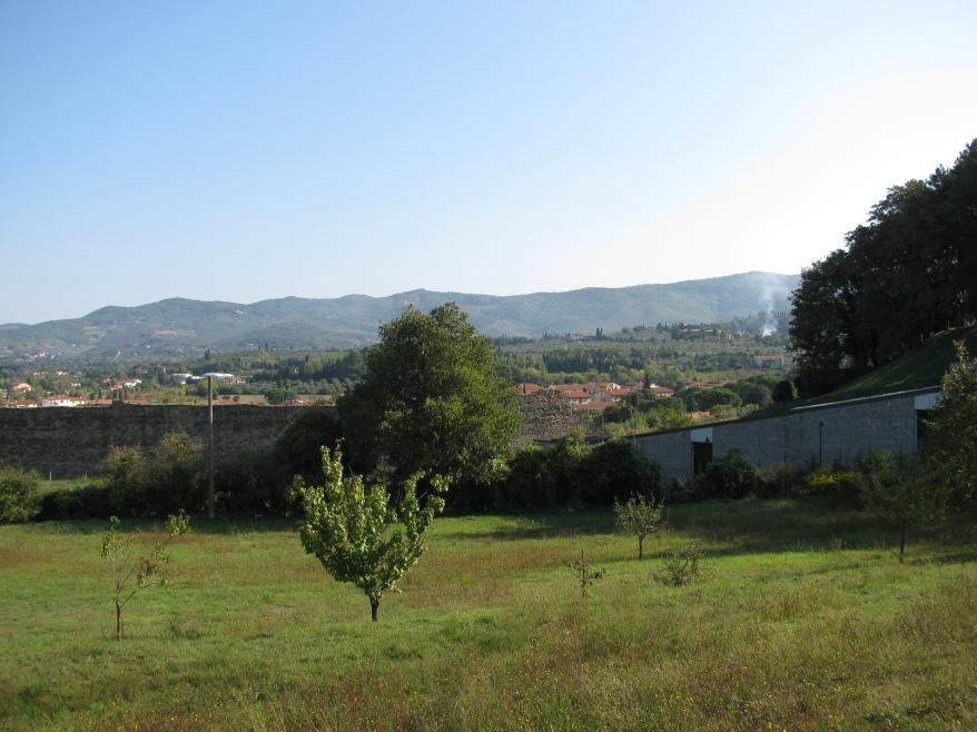Arezzo landscape