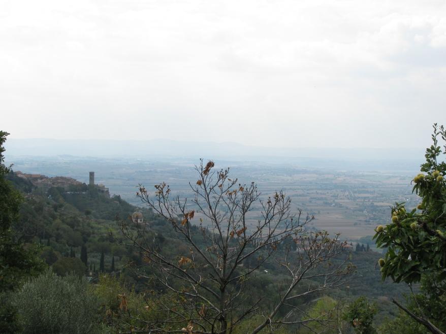 Cortona hills view