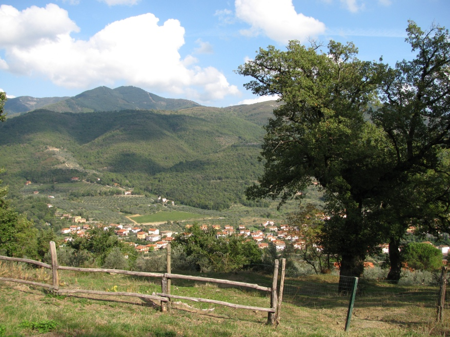Siena landscape