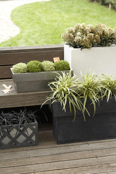 Hello spring garden design principles with p allen smith decorata design musing - P allen smith container gardens ...