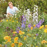 P Allen Smith in the garden
