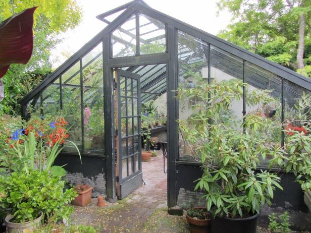 greenhouse82photosue womersley