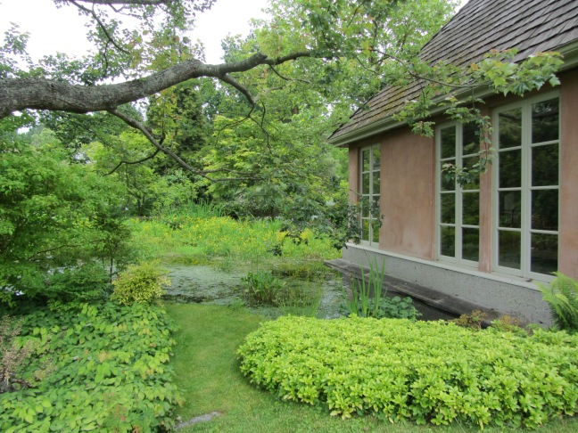 garden photo sue womersley