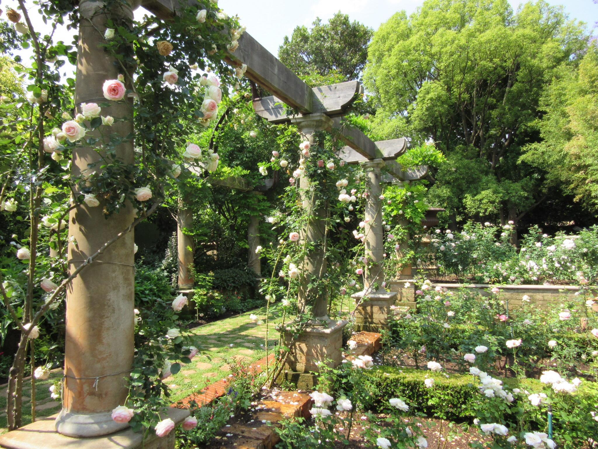Beechwood Gardens Johannesburg South Africa decorata