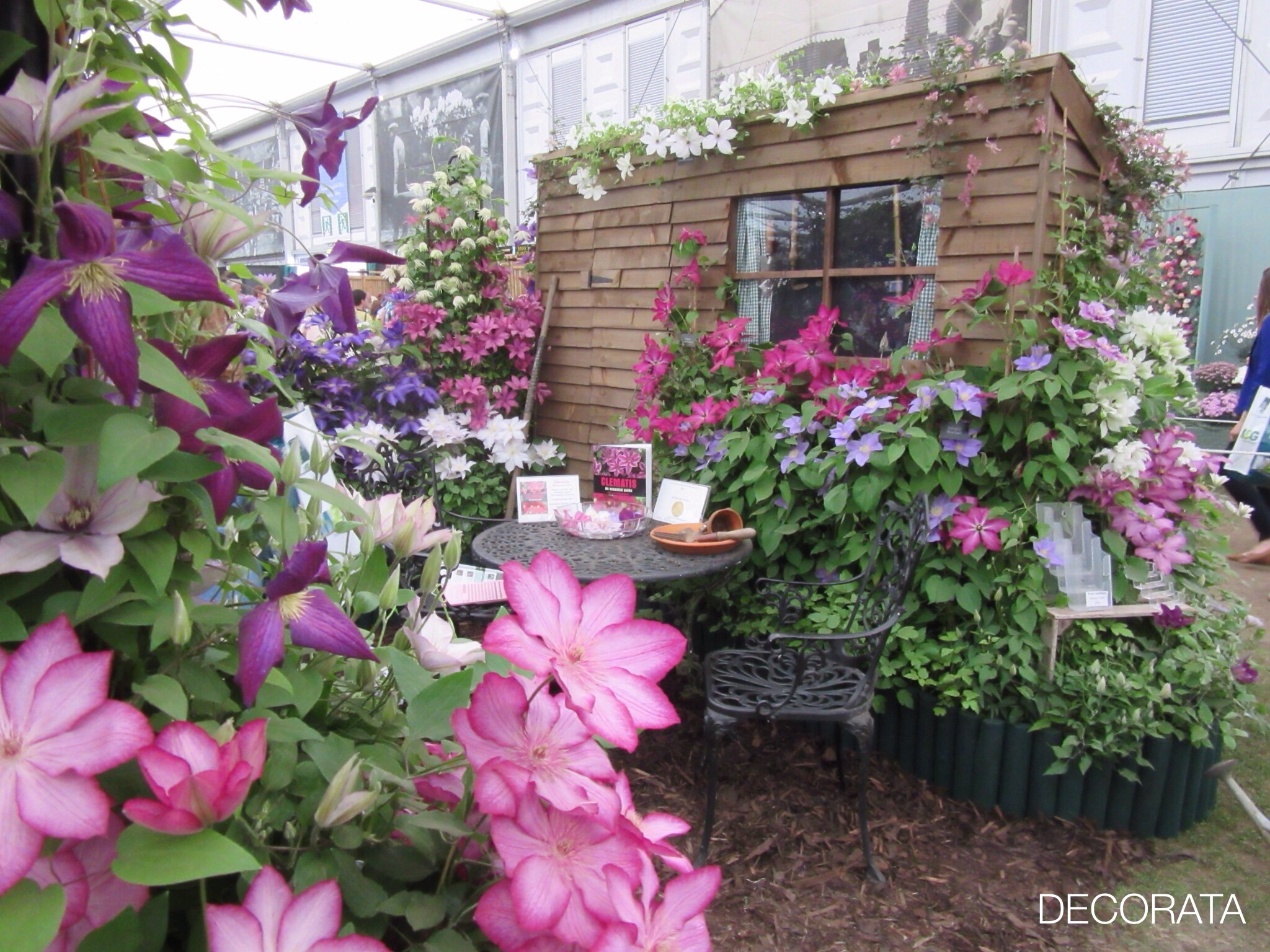 RHS Chelsea Flower Show, clematis, Decorata Design, sue womersley