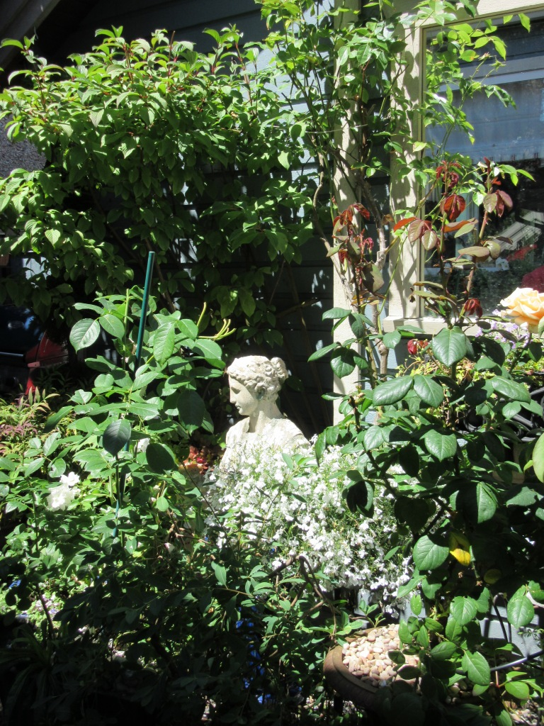 patio pots with statue